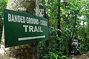 Ecuador, April 27 2010: Sign showing Banded Ground Cuckoo trail at Río Canandé Reserve. Copyright 2010 Peter Horrell