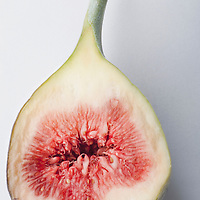 Fig, intersected.