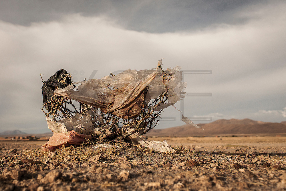 08/11/2014 - Uyuni, Bolivia:Plastic tree #33. Plastic bags are part of the landscape of the Bolivian Altiplano. The accumulation of plastic bags on the environment cause deterioration of the landscapes and agriculture soils and it is associated to the death of domestic and wild animals.