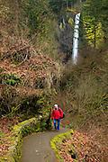USA, Oregon, Columbia Gorge, hiker returning from Latourell Falls, MR