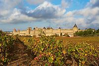 France, Aude (11), Carcassonne, cite medievale classee Patrimoine Mondial de l'UNESCO // France, Aude department, Medieval city of Carcassonne, World heritage of the UNESCO