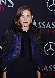 Pregnant Marion Cottilard attends the Assassin's Creed premiere at AMC Empire 25 theater on December 13, 2016 in New York City, NY, USA. Photo by MM/ABACAPRESS.COM