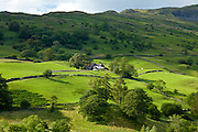 Hill farm near Ambleside in the Lake District National Park, Cumbria, UK