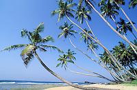 Sri Lanka Côte sud - Plage de Tangalla<br /> Tangalla beach - south coast - Sri Lanka