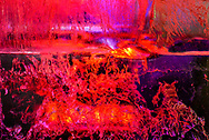 Fire falling from the sky? A strange landscape on a distant planet? Actually it is fissures and patterns in a block of ice, side lit by stage lighting to emphasize the texture. It creates a mysterious, organic effect. This is a favorite kind of subject for me.