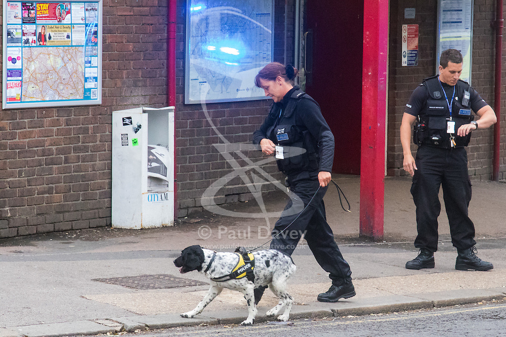 """Kensal Green, London, May 31st 2016. Police in body armoured protective headgear seal off Kensal Green tube station in North West London in what is described as a """"security incident"""". PICTURED: A sniffer dog searches the perimeter of the station."""