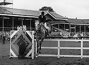 "07/08/1980<br /> 08/07/1980<br /> 07 August 1980<br /> R.D.S. Horse Show: John Player Top Score Competition, Ballsbridge, Dublin.  Caroline Bradley (Great Britain) on ""Landmine""."
