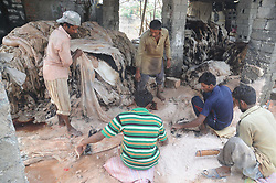 September 4, 2017 - Rawalpindi, Punjab, Pakistan - Pakistani laborers collect animal skin to be used in making leather products, at a warehouse. (Credit Image: © Zubair Abbasi/Pacific Press via ZUMA Wire)