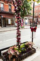 West Greenwich Village
