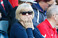 An anxious Charlton fan during the EFL Sky Bet League 1 match between Rochdale and Charlton Athletic at Spotland, Rochdale, England on 5 May 2018. Picture by Paul Thompson.