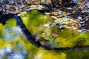 Autumn creek reflection, October, Cheshire County, New Hampshire, USA