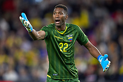 March 21, 2019 - Orlando, FL, U.S. - ORLANDO, FL - MARCH 21: Ecuador goalkeeper Alexander Dominguez (22) argues a call in game action during an International friendly match between the United States and Ecuador on March 21, 2019 at Orlando City Stadium in Orlando, FL. (Photo by Robin Alam/Icon Sportswire) (Credit Image: © Robin Alam/Icon SMI via ZUMA Press)