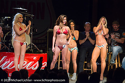 Miss Swimsuit USA had a competition Saturday night in the Destination Daytona pavillion during the 2015 Biketoberfest Rally. Ormond Beach, FL, USA. October 17, 2015.  Photography ©2015 Michael Lichter.