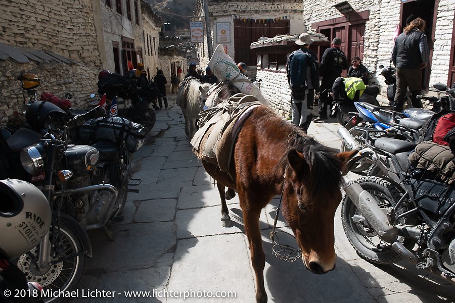 Chai break at the Buddha Pub and Bar in Marpha on day-5  of our Himalayan Heroes adventure riding from Kalopani through the Mustang District to our highest elevation of the trip at over 12,000' when we reached Muktinath, Nepal. Saturday, November 10, 2018. Photography ©2018 Michael Lichter.