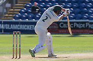 Paul Horton batting during the Specsavers County Champ Div 2 match between Glamorgan County Cricket Club and Leicestershire County Cricket Club at the SWALEC Stadium, Cardiff, United Kingdom on 17 September 2019.