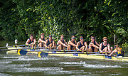 Henley on Thames, England, United Kingdom, 3rd July 2019, Henley Royal Regatta, Heat of the Temple Challenge Trophy,  University of Michigan, USA, move away from the start,  on Henley Reach, [© Peter SPURRIER/Intersport Image]<br /> <br /> 11:00:13 1919 - 2019, Royal Henley Peace Regatta Centenary,