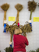08 AUGUST 2019 - DES MOINES, IOWA: A volunteer puts the winners of the Farm Crops: Sheaf Grains contest on display at the Iowa State Fair. The Iowa State Fair is one of the largest state fairs in the U.S. More than one million people usually visit the fair during its ten day run. The 2019 fair run from August 8 to 18.          PHOTO BY JACK KURTZ