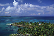 coconut palm trees, Northern Two Cayes, Lighthouse Reef Atoll, Belize, Central America ( Caribbean )