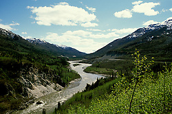 Alaska: Denali Natl Park.  Road Fairbanks to Denali.  Photo akdena102..Photo copyright Lee Foster, 510/549-2202, lee@fostertravel.com, www.fostertravel.com