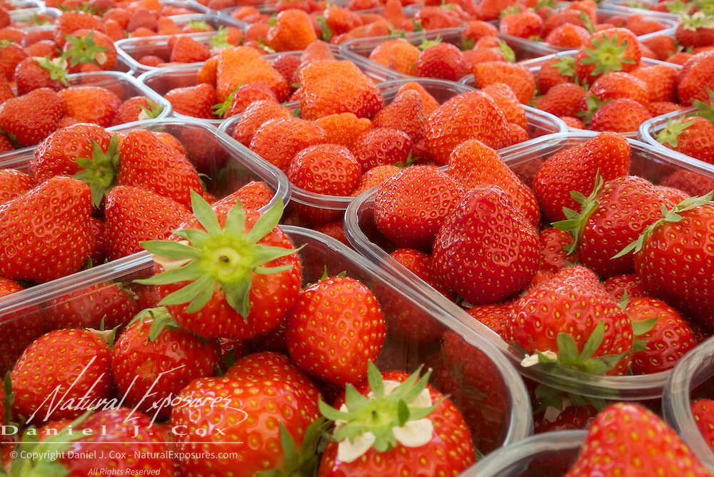 Strawberries at the Farmers Market in Galway, Ireland.
