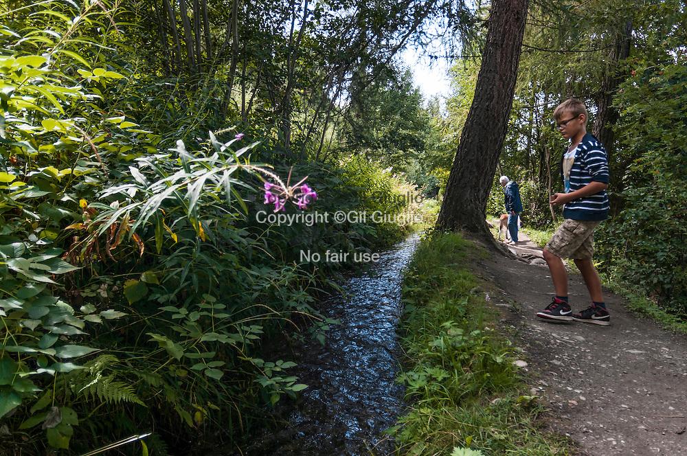 Suisse, Canton du Valais, région Conthey, Haut-Nendaz, village et station de Nendaz, le long des bisses de Nendaz, ici la bisse du Saxon, ce sont des chemins de randonnée aménagés le long des canaux d'irigation de la vallée // Switzerland, Valais canton, region of Conthey, Haut-Nendaz, station and village of Nendaz, they're  hiking trail along the canals of the valley irigation