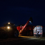 Hans Shuman, 25, covers the evening's last truck full of grain. Crowell, Texas, May 2017.