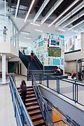 Poyner Family YMCA | Ratio Design | Raleigh, North Carolina