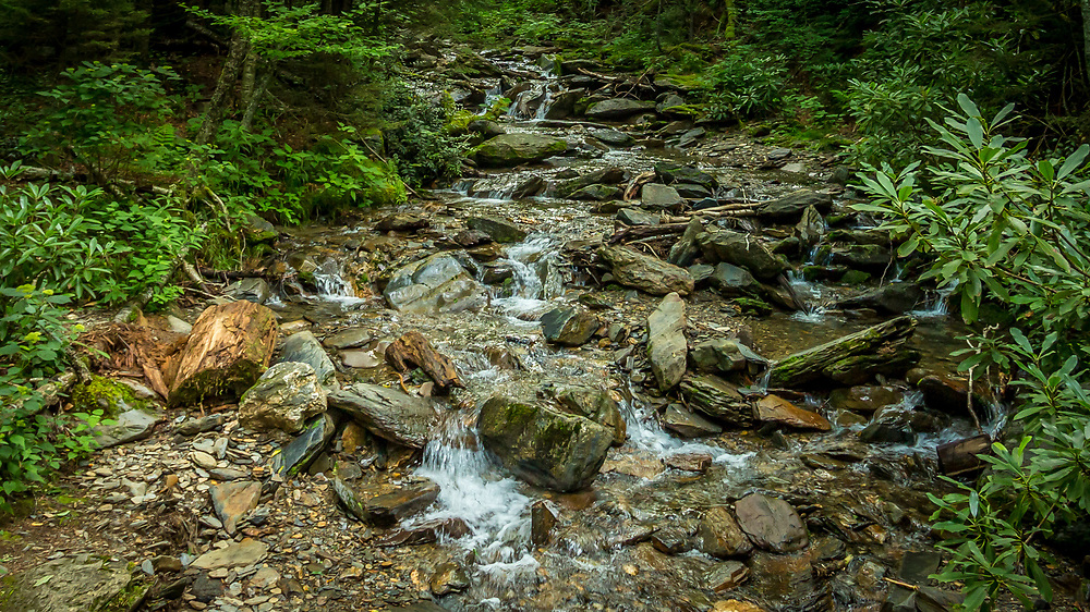 Mountain Stream, Mount LeConte, Great Smoky Mountains. Photo taken July, 29, 2018.