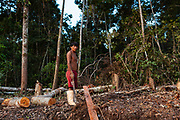 A miner during his work day, around him, trees that have been cut down to expand the area for the extraction of gold in the Peruvian Amazon. Boca Colorado, Peru.
