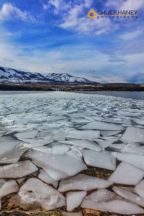 Ice flows at spring breakup on Lake McDonald in Glacier National Park, Montana, USA
