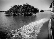 Boat to Battambang navigates through a flooded forest, Tonle Sap, Cambodia.