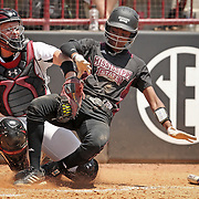 South Carolina vs Mississippi State softball action in Columbia, S.C. ©Travis Bell Photography