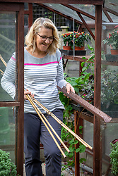 Tidying up a greenhouse before winter.