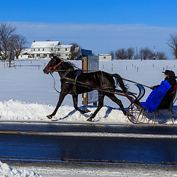 Gordonville, PA - January 24, 2016: Amish use a one-horse open sleigh for transportation after a snowstorm.
