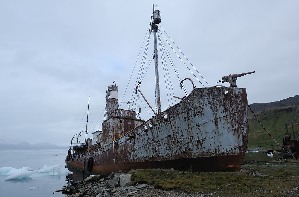 The whaling boat Petrel beached in the ruins of the Grytviken whaling station. Grytviken, South Georgia 20Feb16