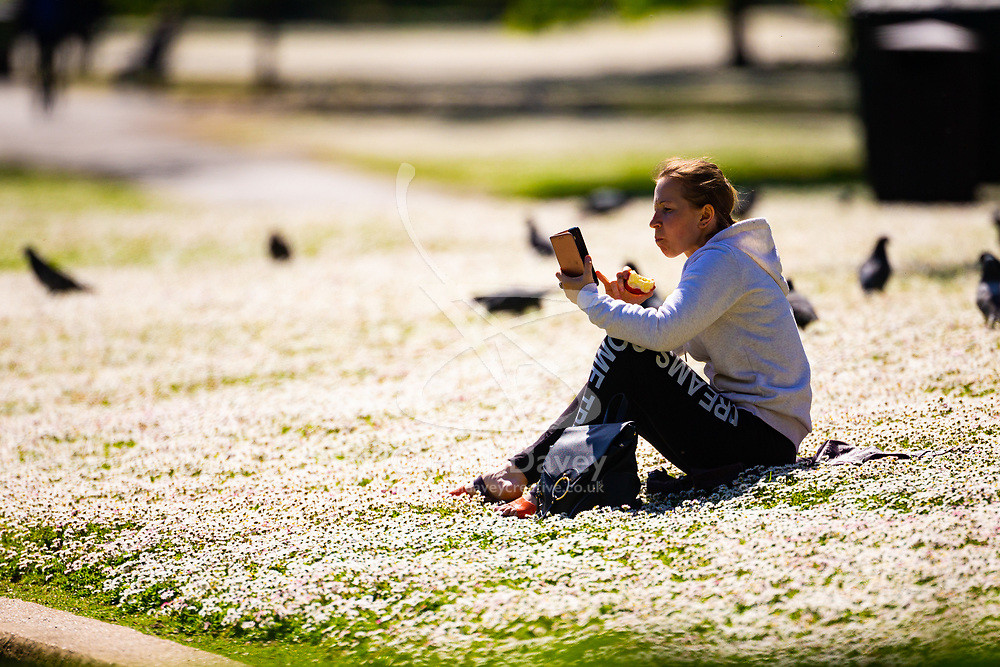 A woman enjoys a moment of solitude among the daisies carpeting the lawns on a bright spring morning in Regents Park London. London, May 14 2019.