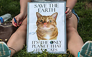 Woman with a sign featuring her cat Sadie sitting on the National Mall listening to the rally after the Climate March.