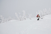 Backcountry skiing at Jackson Hole, Wyoming.