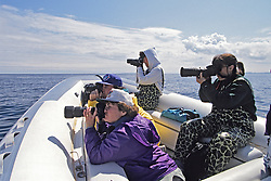 Earthwatch Crew With Cameras