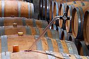 Chateau de Montpezat. Pezenas region. Languedoc. Barrel cellar. Drawing a sample with a pipette. France. Europe.