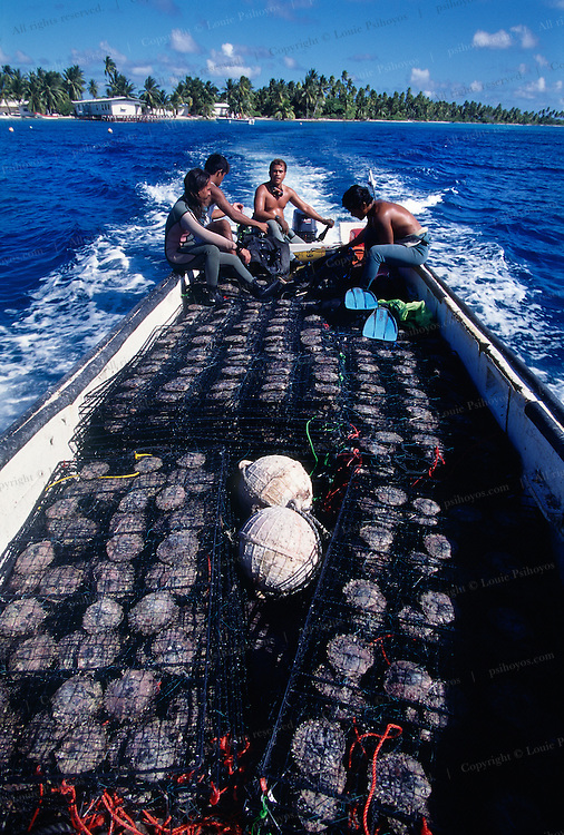 Divers in Boat with Harvest of Pearl Oysters.