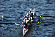 Crew: 17   Nottingham Trent University RC   NTU-GILLARD   4- Band 2<br /> <br /> Head of the Trent 2018<br /> Division 3<br /> <br /> To purchase this photo, or to see pricing information for Prints and Downloads, click the blue 'Add to Cart' button at the top-right of the page.