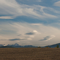 High altitude cirrus clouds presage a fall storm over harvested wheat fields east of  Bozeman Montana.