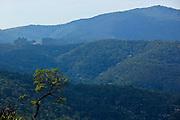 Nova Lima_MG, Brasil...Estacao Ecologica de Fechos, localizada no municipio mineiro de Nova Lima, Minas Gerais. ..Ecological Estation of Fechos in Nova Lima, Minas Gerais...Foto: BRUNO MAGALHAES / NITRO.