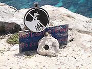 Mexico, Yucatan, Iguana at the Tulum beach