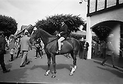 09/08/1967<br /> 08/09/1967<br /> 09 August 1967<br /> R.D.S. Horse Show 2nd day at Balls bridge, Dublin. Photo shows Miss Elaine Banber following her fathers footsteps.