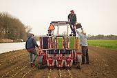 Gathering Together Farm