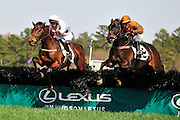 27 March 2010 : William Dowling and AMBERSHAM (right) battle with Brian Crowley and ARCADIUS over the las hurdle in the Woodward Kirkover hurdle race at the Carolina Cup. ARCADIUS would go on to win the race.