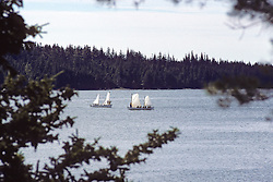 2 Sailboats