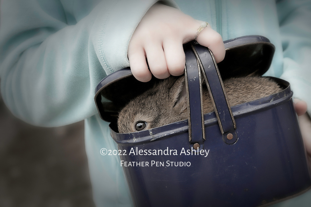 Little girl holds new pet rabbit in antique lunchpail at rural Tennessee flea market.